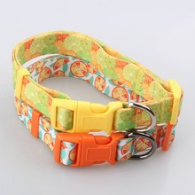 Quality-Assured Manufactory Custom Colorful Sport Dog Shock Collar