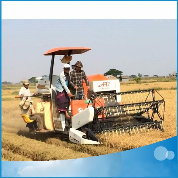 AU 2.0I-A Paddy rice and wheat harvester