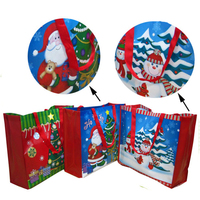 Hot sale for Christmas gift packing used cheap non woven bag