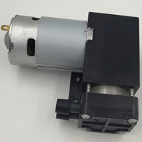 Manufacturer directly supply 12v or 24v piston pump small with high quality
