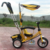 baby stroller with canopy three wheels kid Tricycle