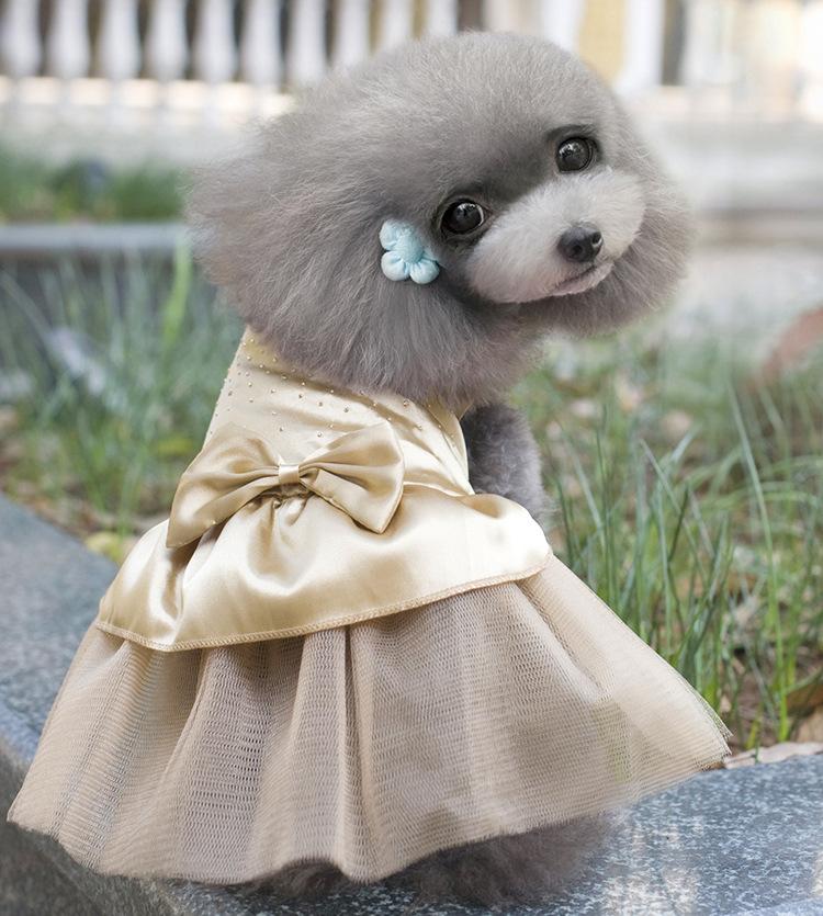 Летние Платья для Домашних Животных Одежда для Собак Щенок Свадьба Юбки Алмаз Бутон шелковые Одежды Кошка Платье Футболка Товары для Животных