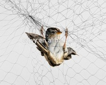 Factory wholesale agricultural bird netting protecting net Exported to Worldwid