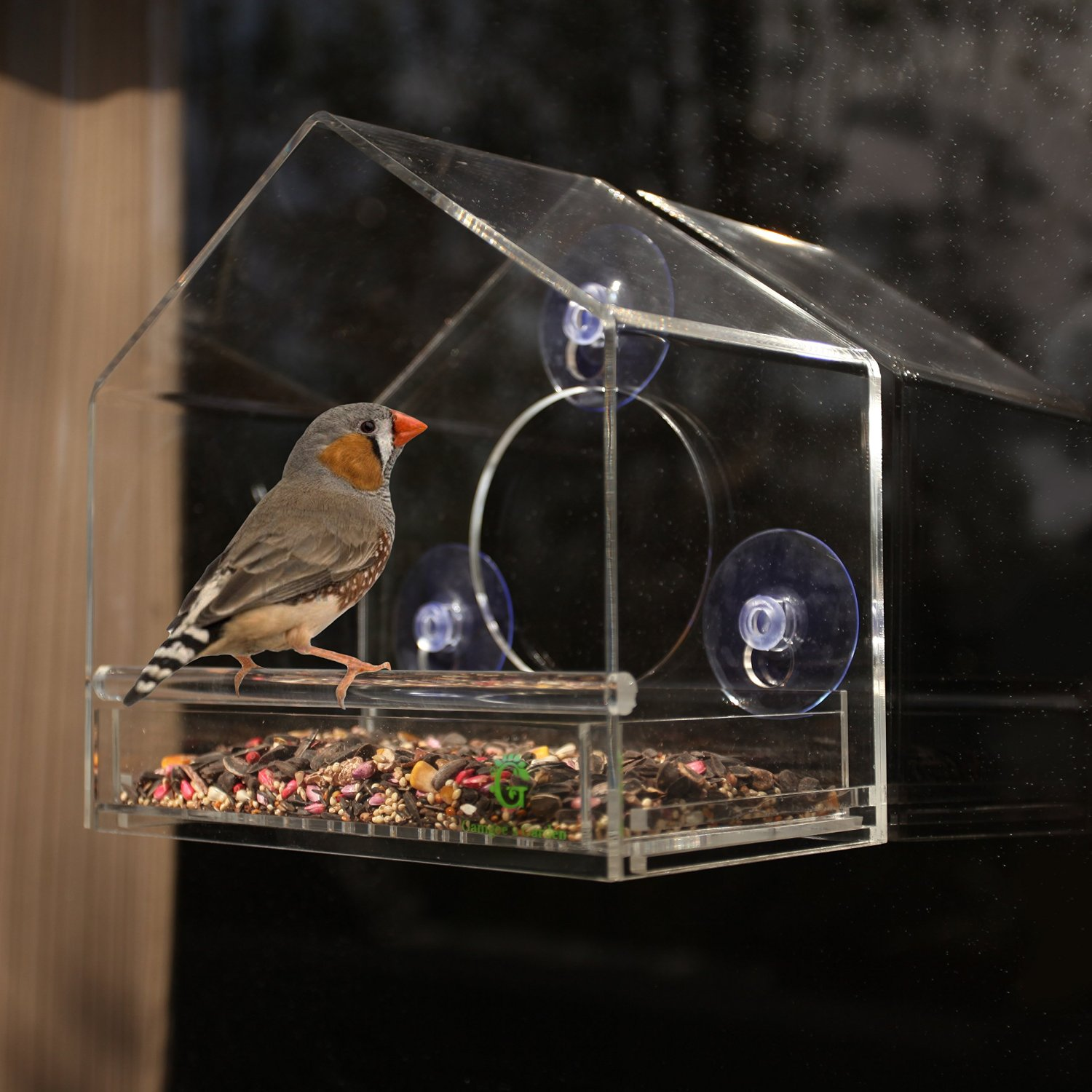 factory plexiglass clear large decorative bird cage