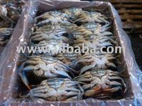 Frozen Blue Crab Female and Male No Egg/No Roe