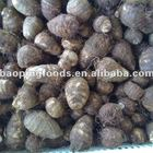 Taro Taro China Fresh Taro On Hot Sale