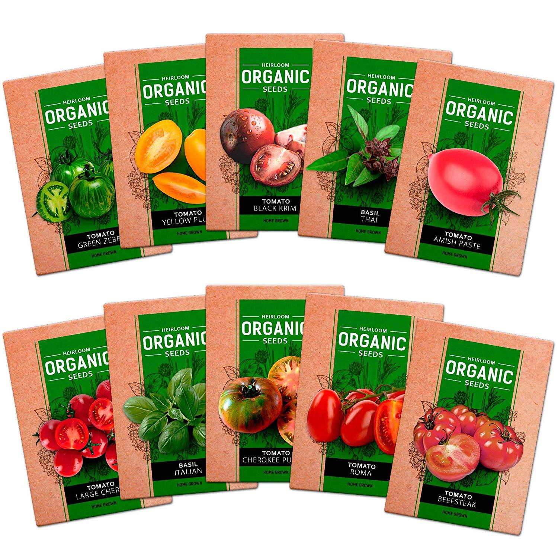 Common Basil Easy Grow Herb NON-GMO Variety Sizes Sweet Basil Seeds