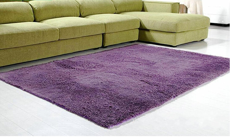 Modern Shag Area Rugs Living Room