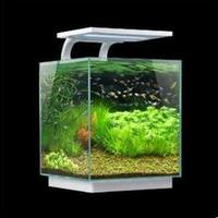Cheap Acrylic customized small fish aquarium