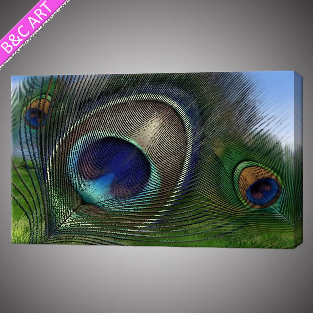 Beautiful Colors Modern Feather Canvas Prints Peacock Feather Decorative Painting For Wall Decoration