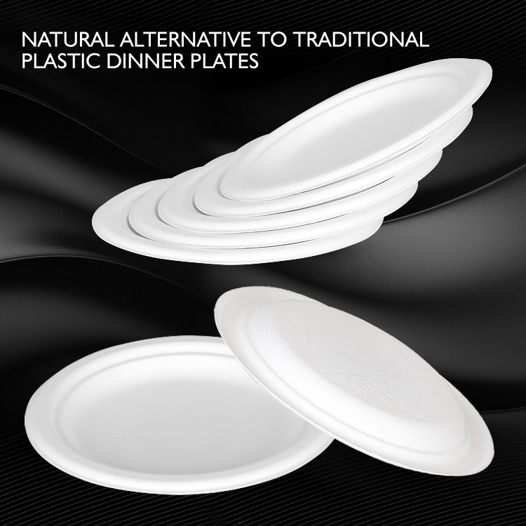 Biodegradable compostable tableware paper sugarcane plate