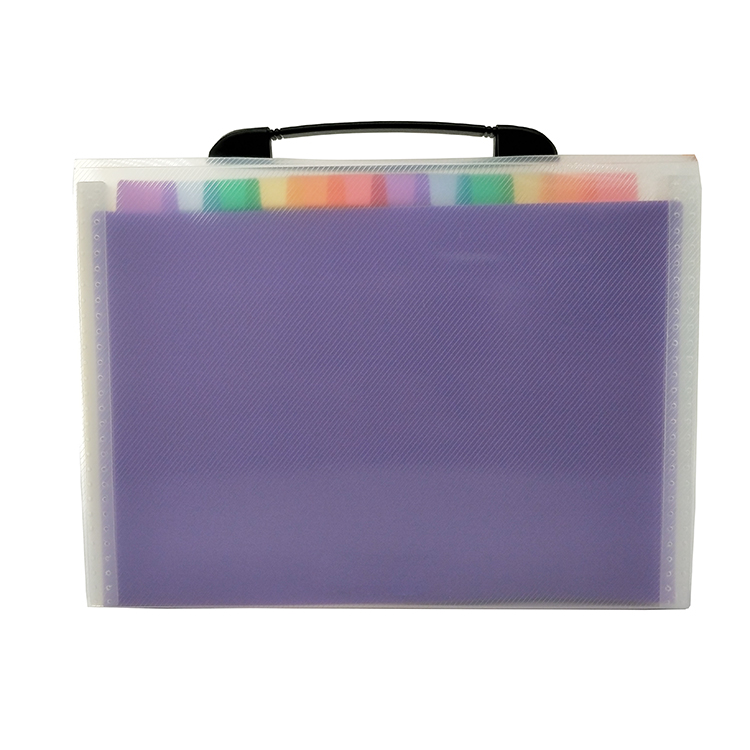 A4 Conference Portfolio 13 Pockets Multicolor Expanding Accordion File Folder with Portable Handle for Business Office