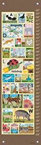Oopsy daisy Modern Alphabet on Chocolate Growth Chart by Lisa DeJohn, 12 by 42 Inches by Oopsy Daisy