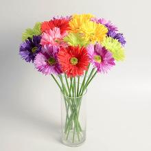 Promosi Bunga Sederhana Beli Bunga Sederhana Produk Dan Item