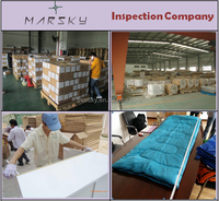 machine inspection service in shaoxing/factory audit/inspection report