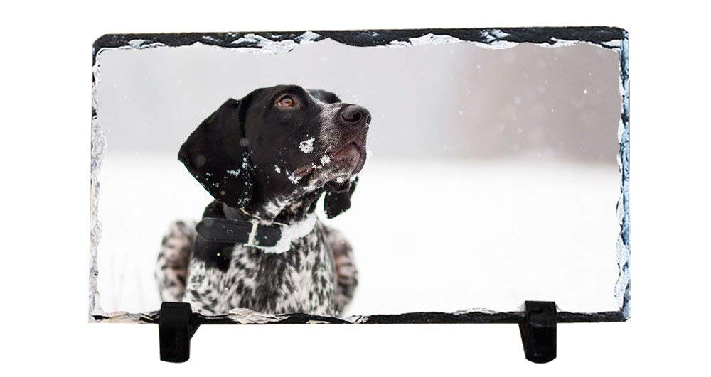 Y.H.X Personalized Picture Frames Photo Rock Slate Dog Photo Plaque Customized Photo Plaque