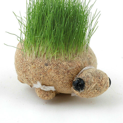 diy cute potted grass kit growing real grass and personality grass doll mini plant doll magic head pet plant