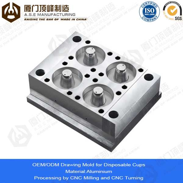 Xiamen A.S.E OEM Manufacturing Mold Parts for goods received stamp