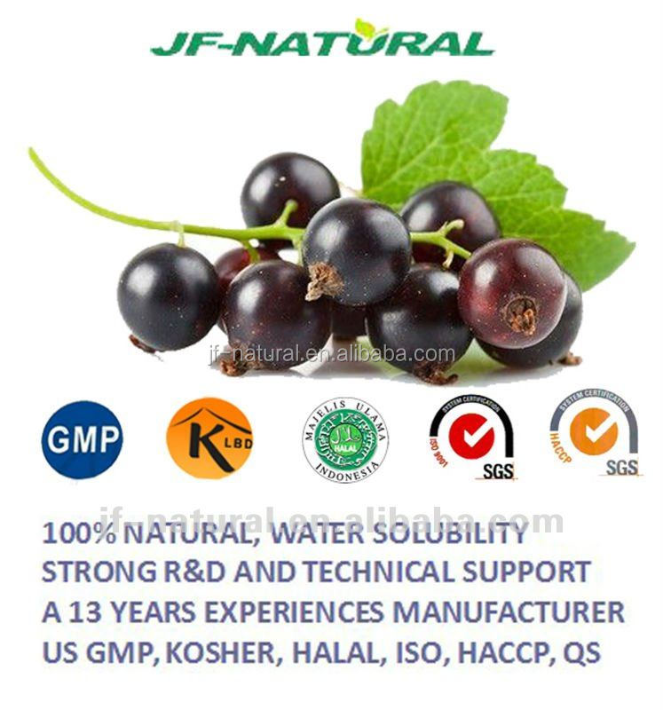 food grade fruit concentrate powder black currant powder