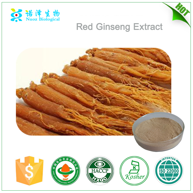 Korean Fermented Red Ginseng Extract Powder Capsule/panax ginseng/Korea Insam/6 year old ginseng