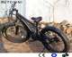 750W Bafang Mid Drive Moped Electric Mountain Bike/750w Ebike