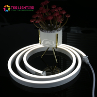 Latest design waterproof swimming pool neon LED rope light