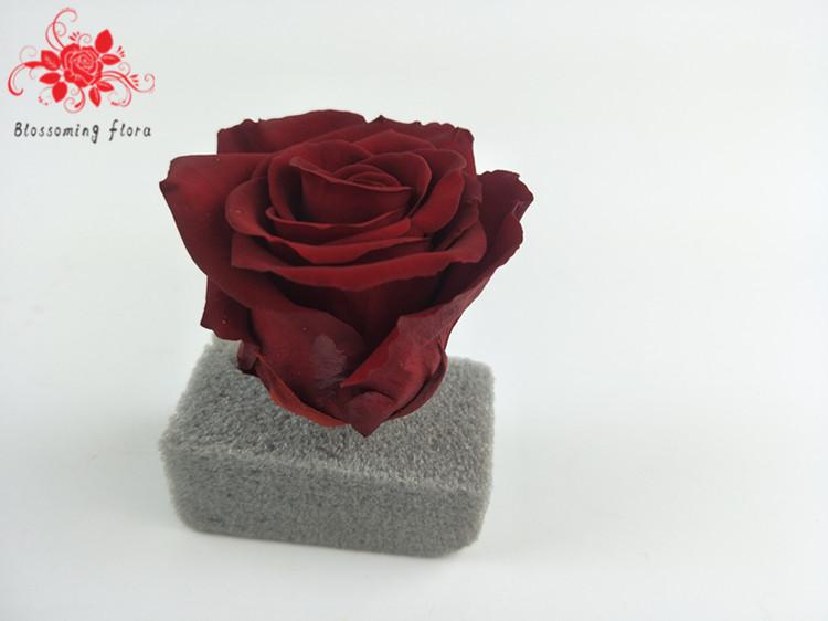 Wholesale Price Long Lasting Rose Flower Preserved Roses ...