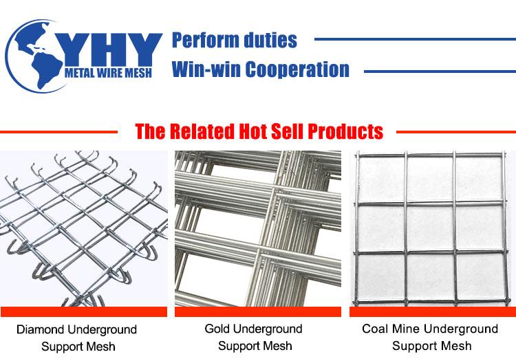 Galvanized roof  mine mesh Metal Wire Diamond Protecting Mesh