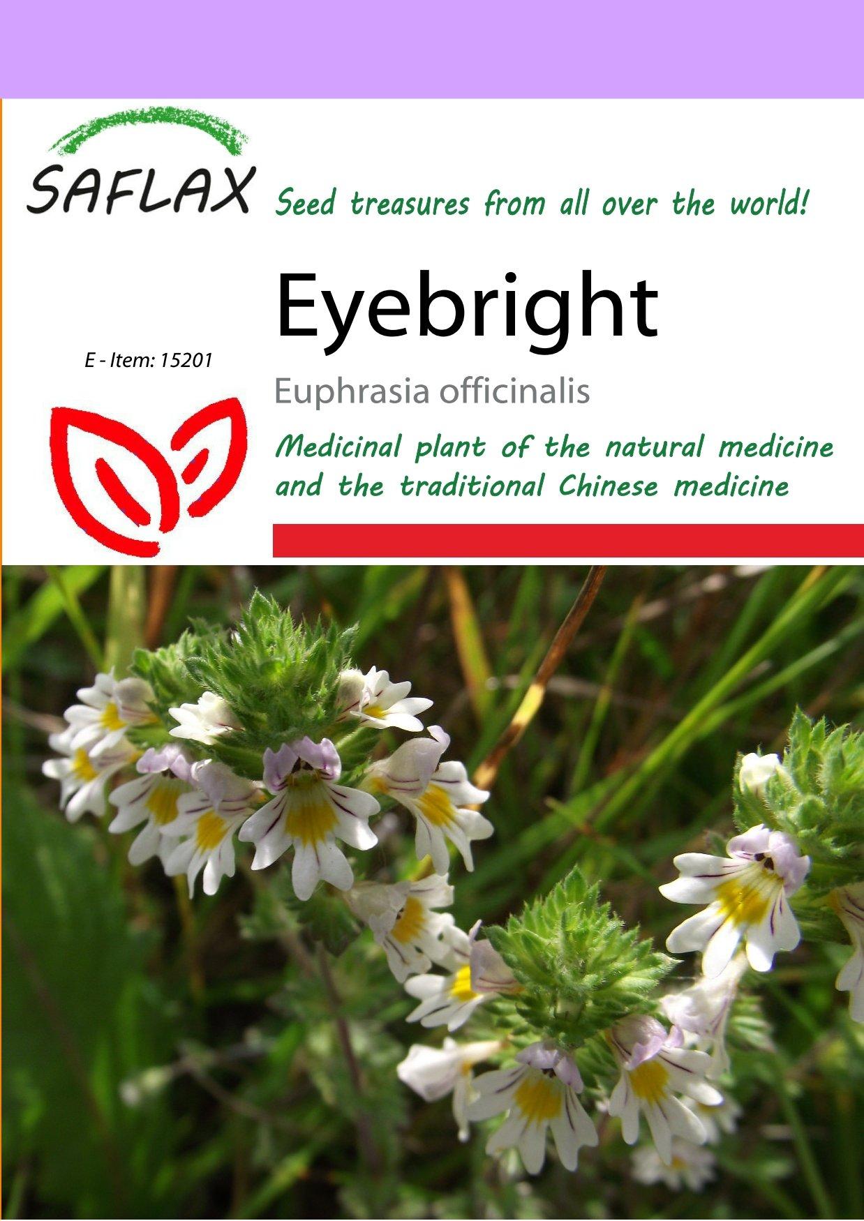 SAFLAX - Eyebright - 200 seeds - Euphrasia officinalis