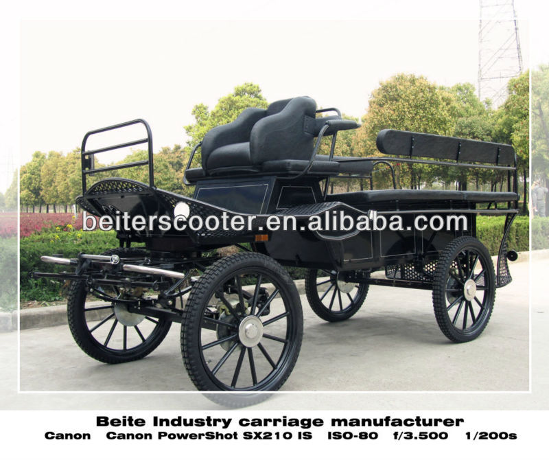 Sightseeing horse drawn vehicle/carriage/buggy from China