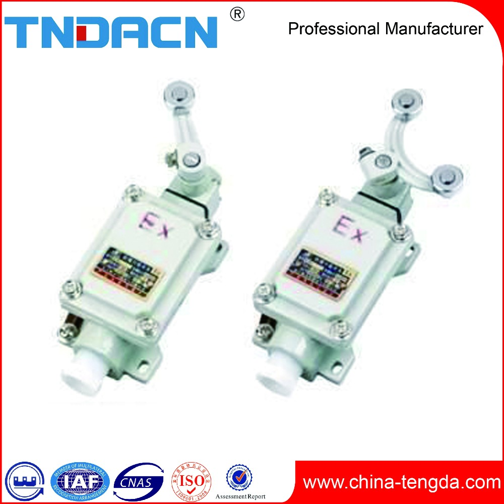 Tengda 2017 Best Selling Products SAA Standard Anti-corrosion Waterproof Electric Switch