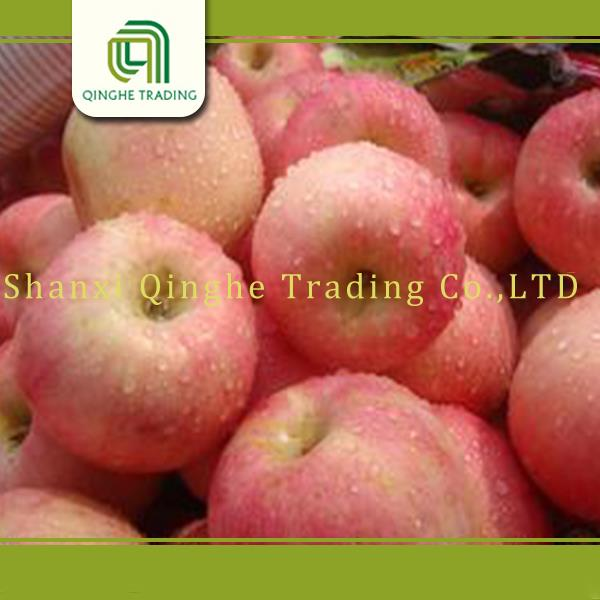 chinese fresh apple green smith apple bulk apples