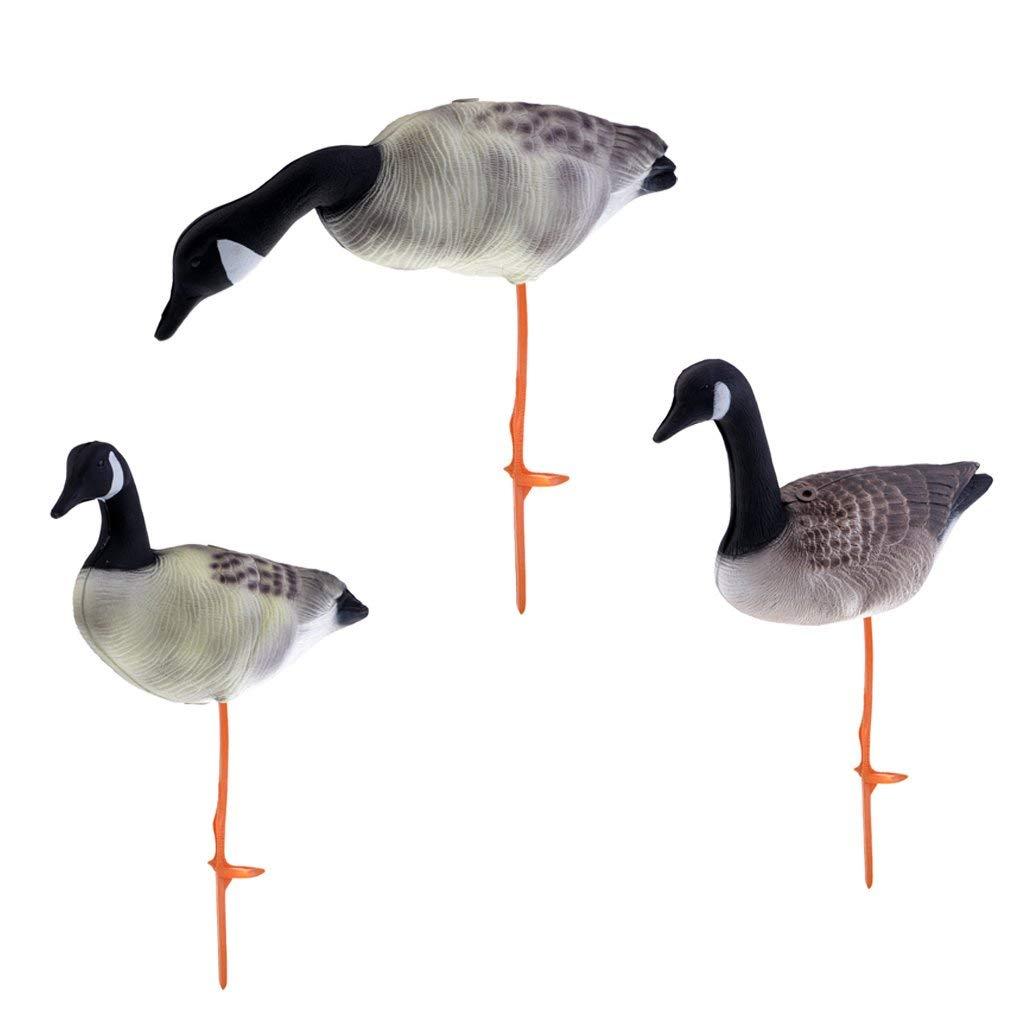 a6367693761 Get Quotations · Homyl 3Pcs 3D Goose Hunting Decoys