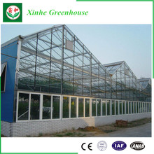 Excellent Material Agriculture Greenhouse/Low Cost Green House,modern glass greenhouse for agriculture farming and grow