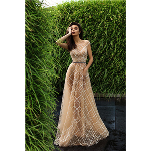 Champagne Prom Dress Long Ladies Party Wear Gowns 2018 Lace Pattern Formal Dresses Elegant