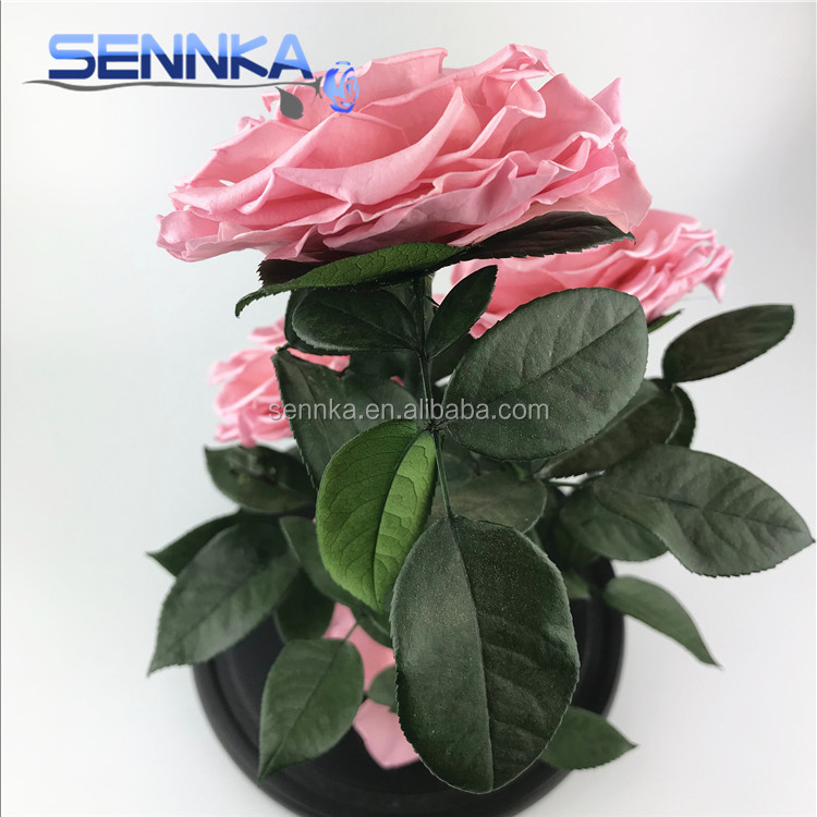 wholesale real touch preserved flower Luxury Dubai Preserved roses in glass dome/tubes