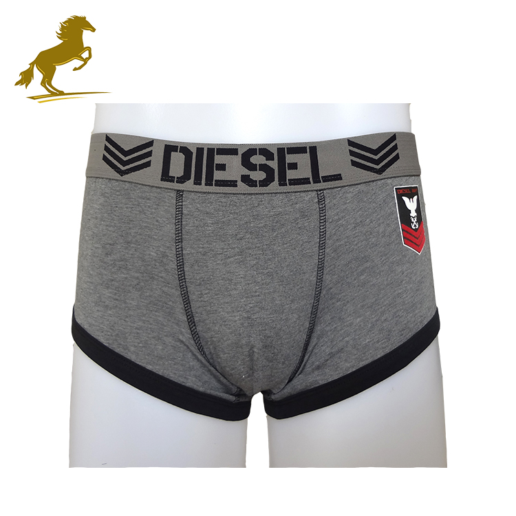 Stylish Springy Grey Color Ultra Thin Super Sexy Penis Men Underwear
