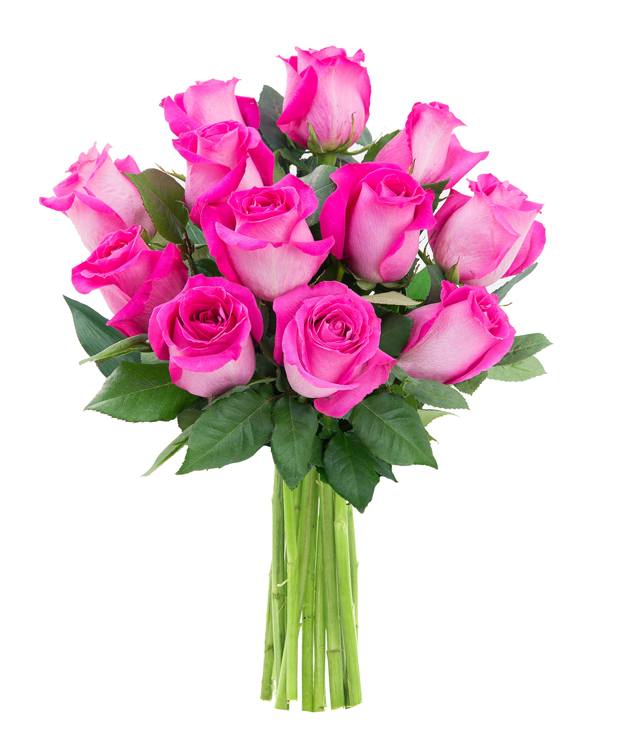 Cheap Pink Fresh Roses Find Pink Fresh Roses Deals On Line At