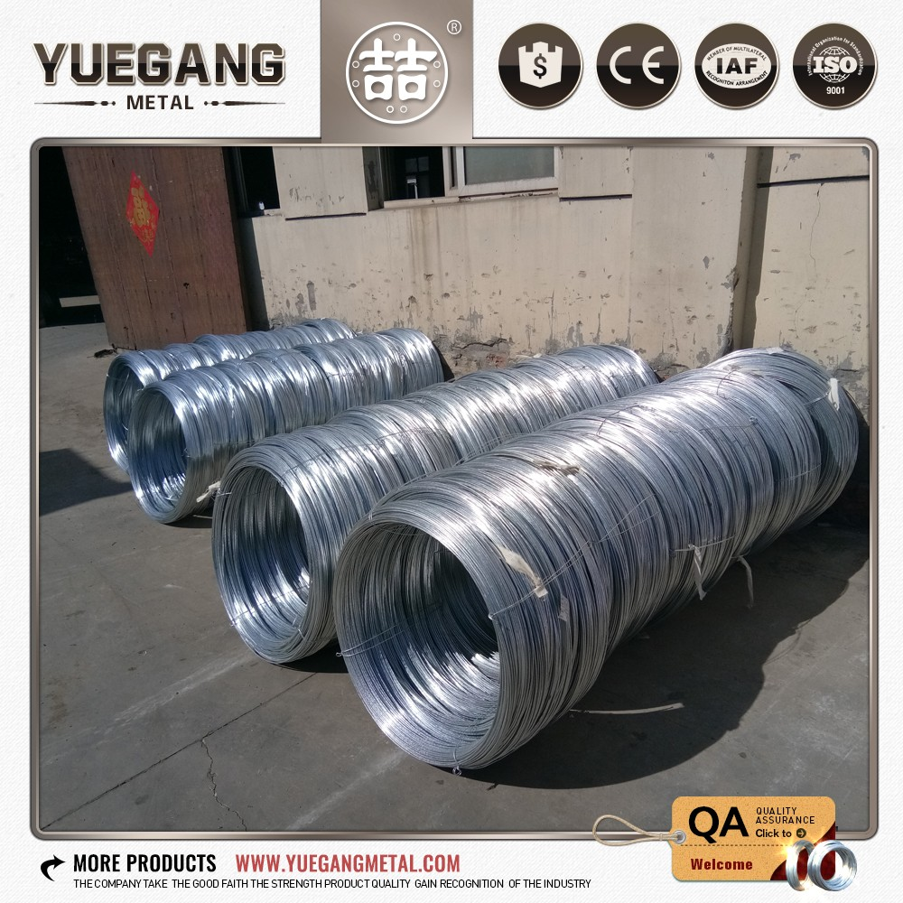 Galvnaized Binding Wire, Galvnaized Binding Wire Suppliers and ...