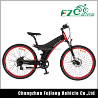 Enjoyable race cheap electric bike design