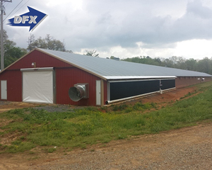 Light Frame Steel Structure Poultry Farm Shed Design Prefab Poultry House