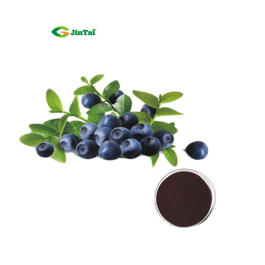 Antocianida 25% blueberries blushwood berry extrato