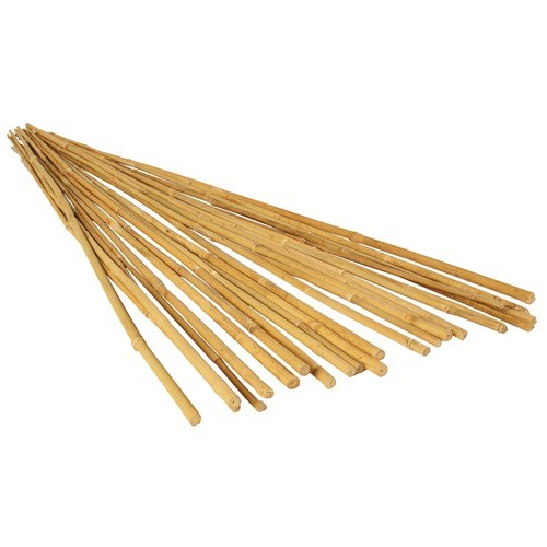 Bamboo stakes for gardening with cheap price