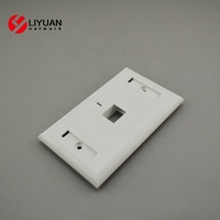USA Type One Outlet RJ45 Universal Keystone Wall Face Plate