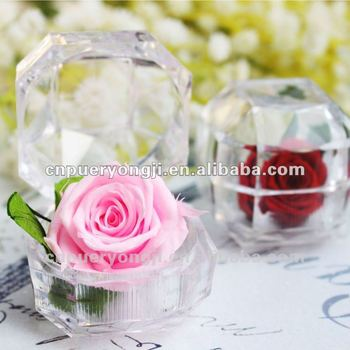 Natural Preserved Flower Wedding Souvenirs Philippines Buy Wedding