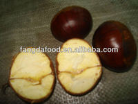 fresh half-dried chestnut in china