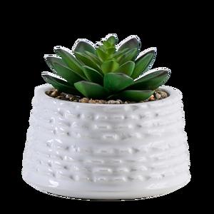 Mini Artificial Potted Plastic Handicraft Succulent Bonsai Plants in Ceramic Pot for Indoor Home Decor