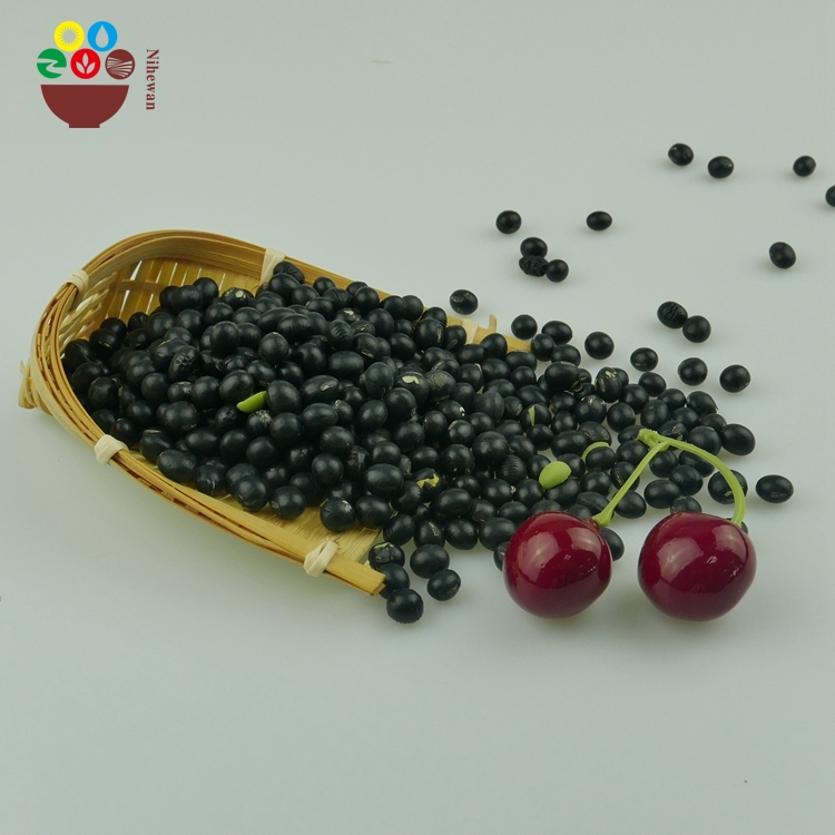 exporting high quality black soybean with green kernel