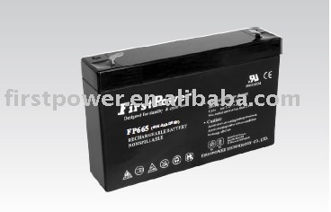 FirstPower Standard Series FP665 batteries