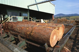ebony Timber for wholesale 2015